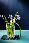Bluebells in a glass of water and blue napkin