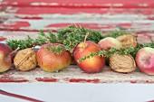 Äpfel, Walnüsse und Wacholderzweige als Weihnachtsdeko