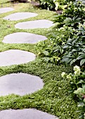 Garden path made of ingrown tread plates