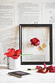 Red tulip in black picture frame on wall papered with book pages