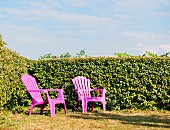 Two pink plastic garden chairs against hedge in corner of garden