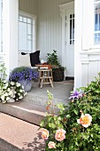 Flowering roses, potted plants on entrance steps leading to veranda of traditional country-house villa