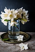Fresh garden flowers in glass of water