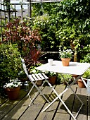 White garden furniture and potted plants on secluded terrace surrounded by climbing plants