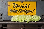 Green carnations on vintage printing press with warning sign