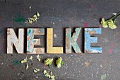 The word 'Nelke' (carnation) made from vintage alphabetic printing blocks