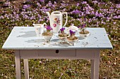Crocuses and hay in vintage-style coffee cups on garden table