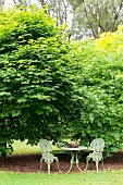 Romantic garden space for two in front of green bushes