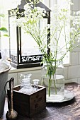 Vintage-style arrangement of wooden box, cow parsley and lantern next to bathroom window