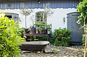 Vintage zinc bathtub and potted plants outside renovated farmhouse