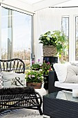 Flowering plants and wicker chair in corner of cosy conservatory with view of garden