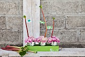 Pink carnations in miniature zinc buckets and rhubarb stalks in green tray