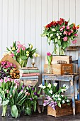 Glass vases of tulips of different colours on floor and wooden chair