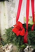 Advent wreath made from asparagus fern and amaryllis flowers hung from red ribbons
