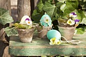 Dyed eggs decorated with violas in vintage plant pots