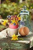 Spring flowers in dyed egg shells