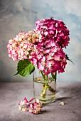 Vase of pink hydrangeas