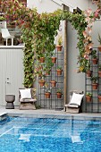 Metal frame with plant pots and vintage wooden chairs in front of house wall, pool with blue mosaic tiles in the foreground