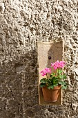A terracotta tile on the wall being used as a flower pot holder for geraniums