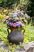 Autumnal asters in an old terracotta jug on a wall