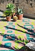Mediterranean plants on geometric tiles on roof terrace