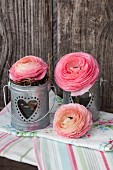 Ranunculus in small zinc buckets on linen napkins against dark wood