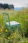 Old kitchen chair in flowering meadow