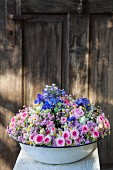 Old washbasin full of flowers in front of wooden door