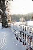 Snowy picket fence and view of winter landscape