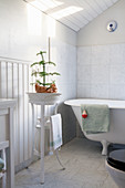 Monkey puzzle tree in wash basin on stand next to bathtub
