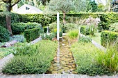 Straight stream, bushes, ornamental grasses and deciduous hedge in landscaped garden