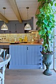 Green climbing plant planted in vintage urn in front of blue kitchen counter in country-house kitchen
