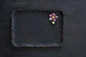 Pink hellebore on black tray