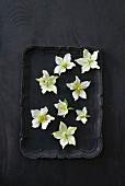 weiße Christrosenblüten auf schwarzem Tablett