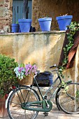 Basket of flowers on lady's bicycle below blue plant pots on wall