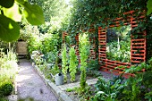 Slatted screen with mirror and kiwi vine in kitchen garden