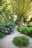 Sandweg mit Grasinsel im naturnahen Garten