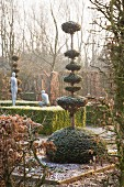 Topiary and clipped hedges in wintry garden