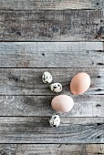 Hens' and quails' eggs on weathered wood