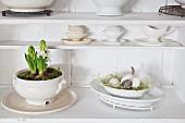 Mit Hyazinthen und Moos bepflanzte Suppenterrine
