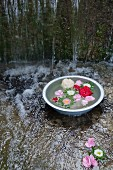 Flowers floating in zinc bowl of water in stream under waterfall