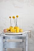 Craspedien stecken in gelben Garnrollen neben Cake Pops