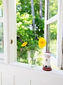 Flowers in drinking glass and lighthouse ornament on windowsil with view into garden