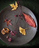 Autumn leaves of different colours on plate
