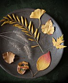 Yellow autumn leaves and grasses on plate