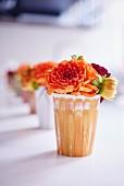 Apricotfarbene Dahlienblüten in Vasen aufgereiht
