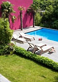 Sun loungers and palm trees on wooden deck next to pool