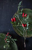 Sprigs of rose hips on green stoneware plates and black surface
