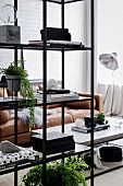 Open shelf made of black metal and glass in the living room