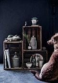 Dog sitting in front of collection of pewter containers on shelves made from old wooden crates